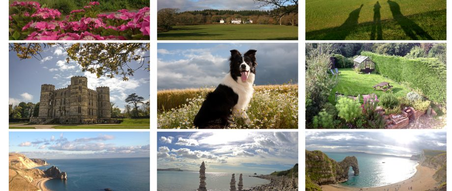 Postcard from The Pink House Lulworth Dorset holiday home accommodation