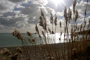 coastal-walks-from-The-Pink-House-to-Lulworth-and-the-Isle-of-Purbeck-Dorset