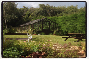 vintage-greenhouse-at-The-Pink-House-Lulworth-Dorset1