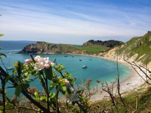 Lulworth Cove by The Pink House Lulworth