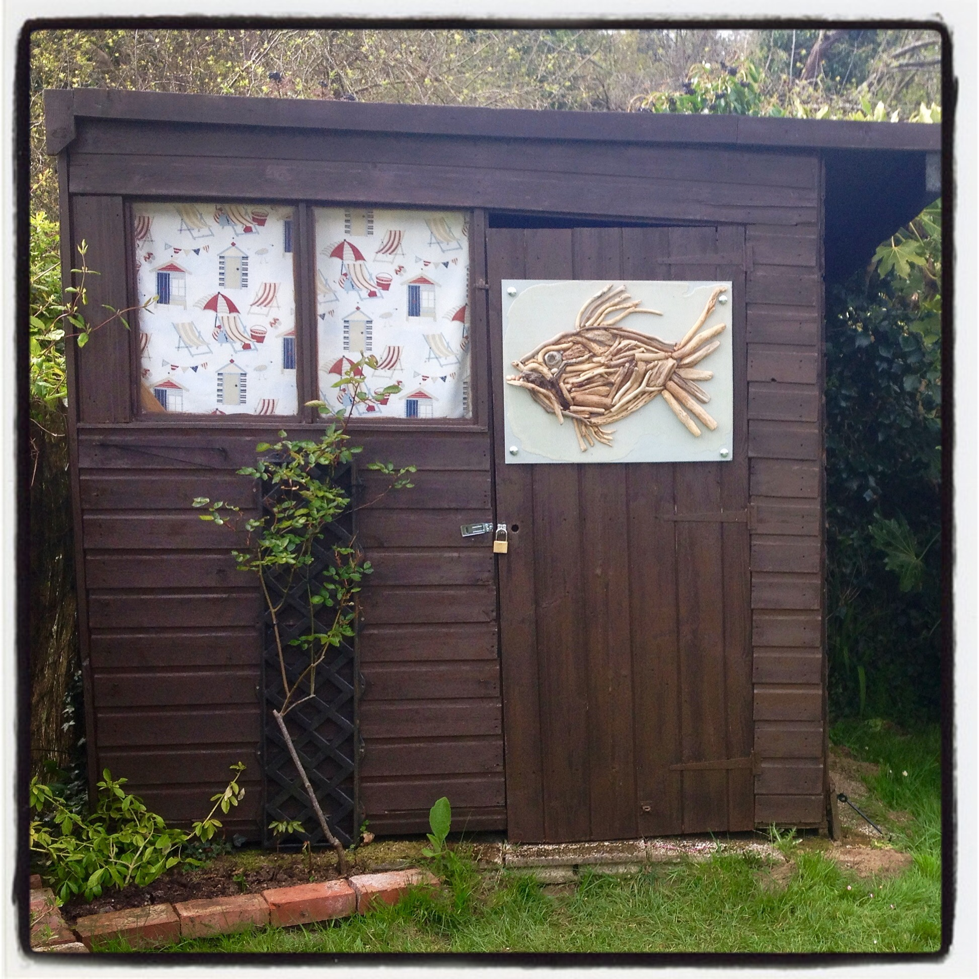 driftwood fish on the garden shed at The Pink House Lulworth Dorset holiday cottage