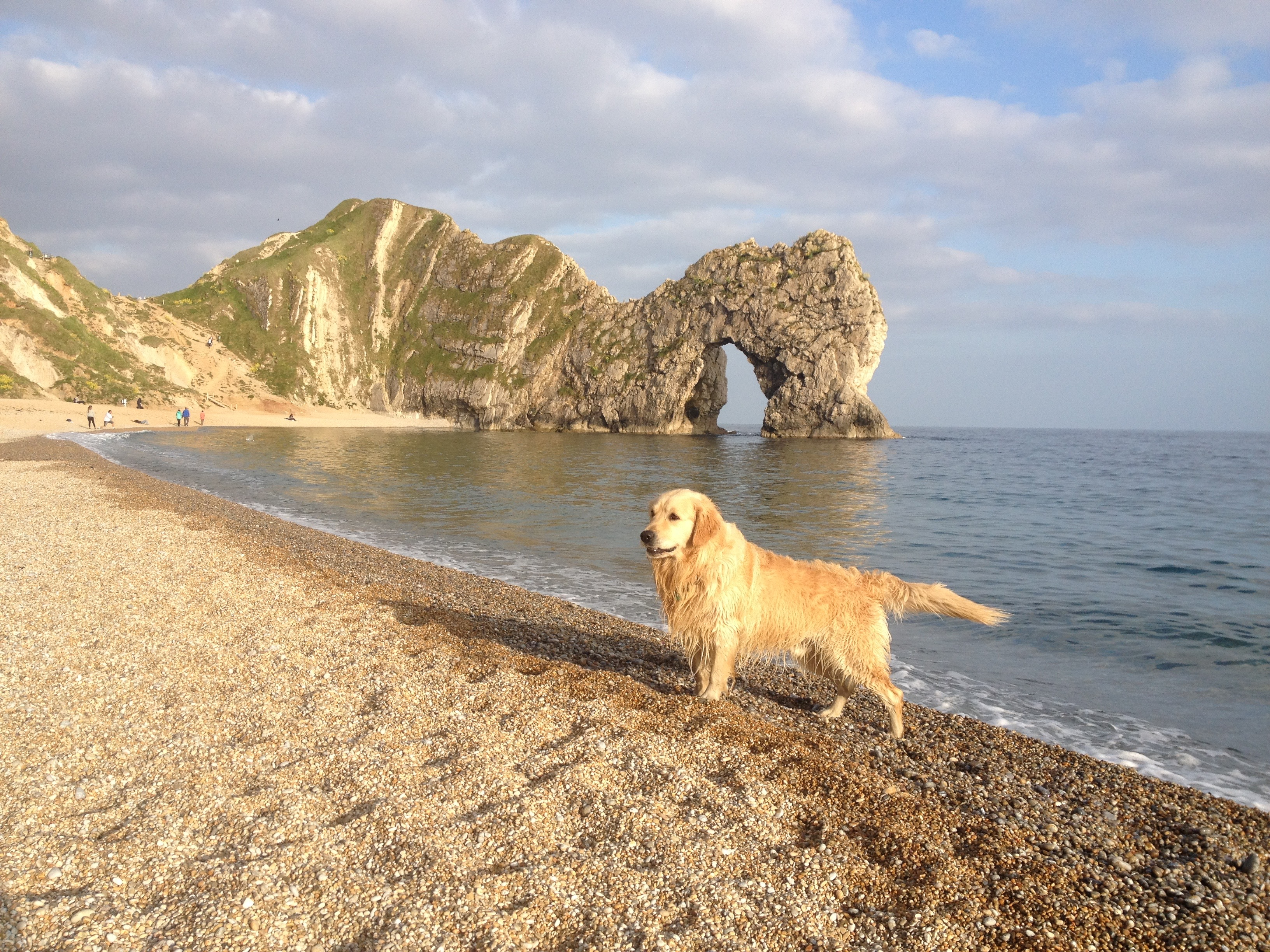 dog friendly holiday home at The Pink House Lulworth near Durdle Door Dorset