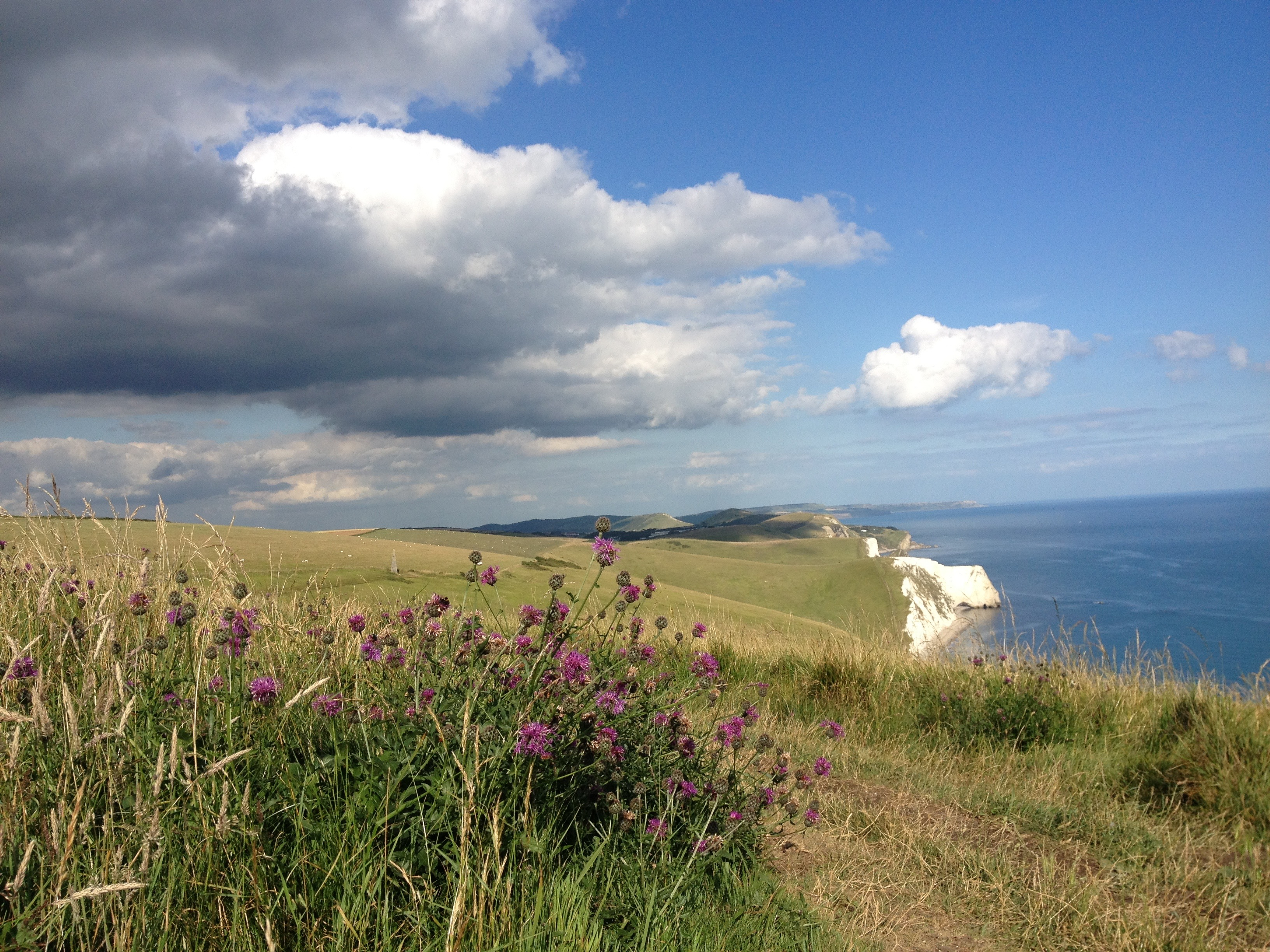 hiking along the Jurassic Coast from The Pink House Lulworth