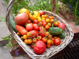 Garden Harvest from The Pink House Lulworth